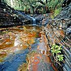 Kalamina Falls, Karijini NP by Mark Boyle