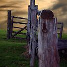 Fence to Nowhere by Sarah Moore