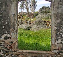 Vista by Cathie Tranent