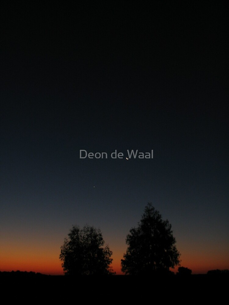 Moontree by Deon de Waal