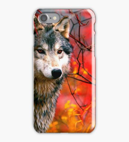 Grey Wolf in Beautiful Red and Yellow Foliage                                            iPhone Case/Skin