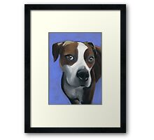 Athena dog portrait Framed Print