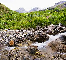 Creek and Rocky Mountain Mountain Vista by David Cuthriell