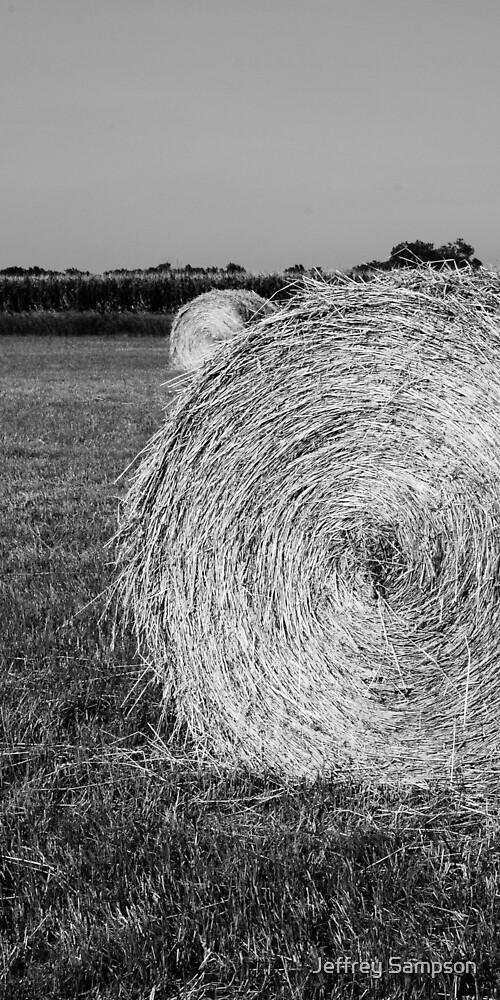 Twin Bails by Jeffrey Sampson