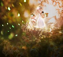 Sunlight Faeries by gingerkelly
