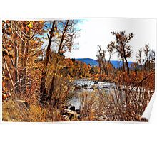 Fall Along the Truckee Poster