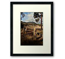 Mt Buangor State Park Framed Print