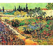 Flowering Garden with Path, Vincent van Gogh Photographic Print