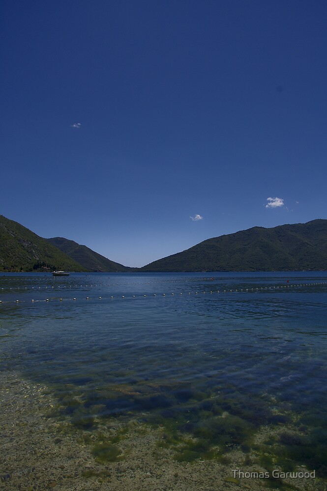 Calm Lake by Thomas Garwood