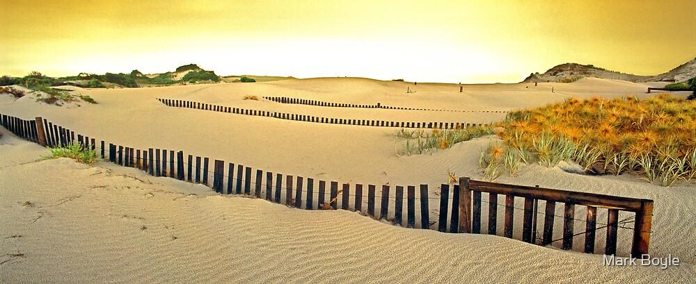 Dune Stabilisers, Cape Arid National Park by Mark Boyle