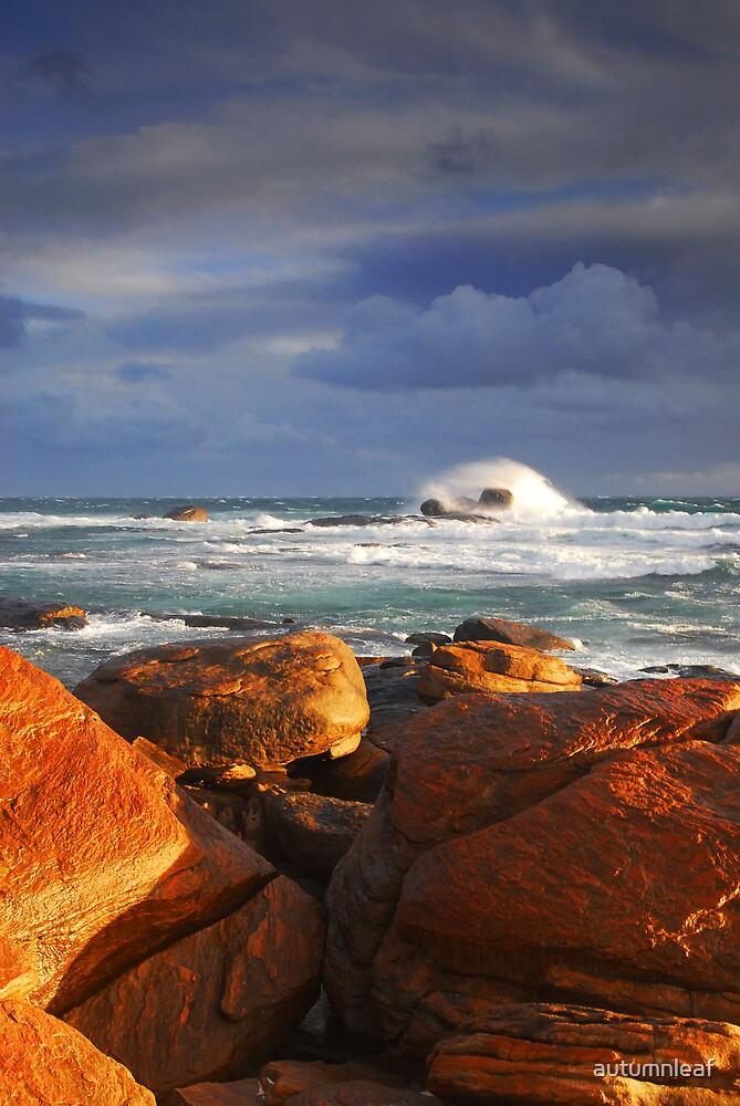 Stormy Sunset Crashing Wave by autumnleaf