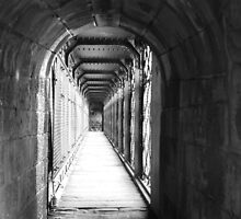 tunnel vision by dsalmon