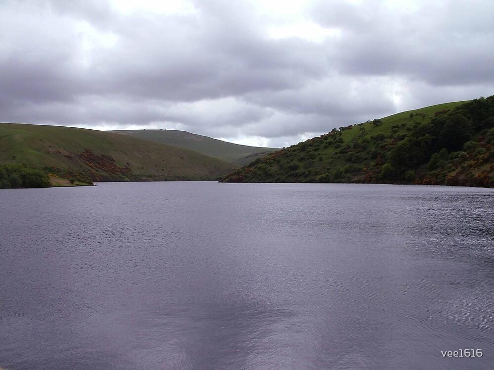 Dartmoor Dam by vee1616