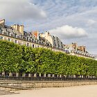 Tuileries, Paris, France #2 by Elaine Teague