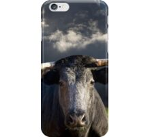 Bull before the Storm iPhone Case/Skin
