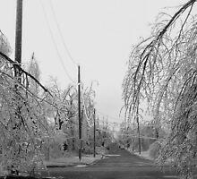 Ice Storm 2007 by headj80