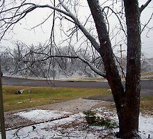 Ice Storm by headj80