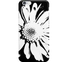 daisy in the garden iPhone Case/Skin