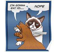 Grumpy revenge Poster