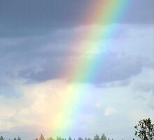 Bright Rainbow by rriley