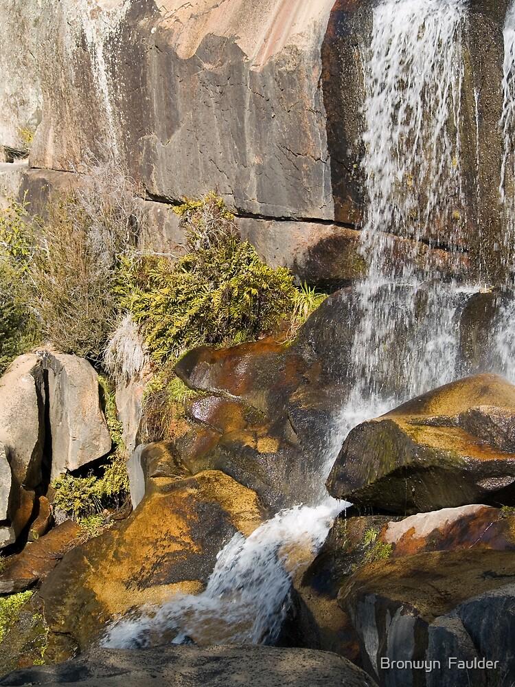 Waterfall by Bronwyn  Faulder