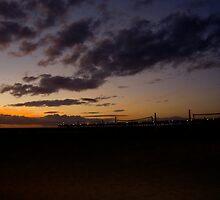 Hermosa Pier 1 by wildesummerrose