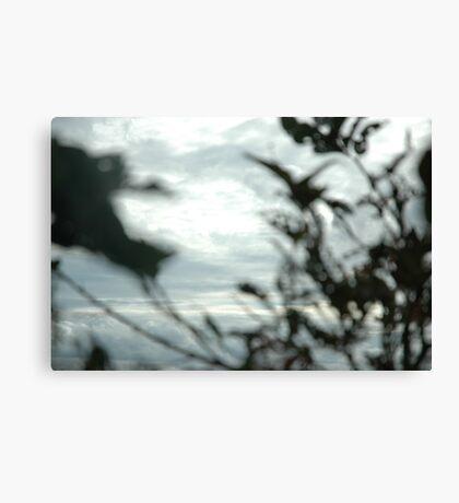 paint brush image Canvas Print