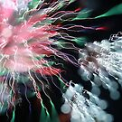 fireworks 11/2/17 by david gilliver