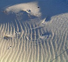 Circles in the sand by geoffalli