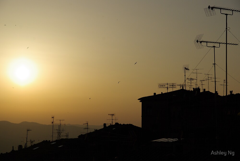 Tuscany Sunset II by Ashley Ng