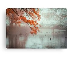 Autumn colors and feeling Canvas Print
