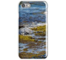 Sooty Oyster Catchers. iPhone Case/Skin