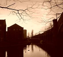 Castlefield at Dusk by chancla