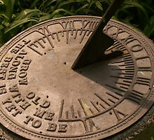 Telling time by a sundial by Ficklephotographer