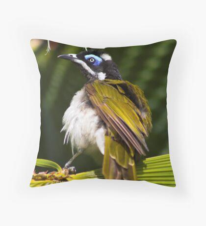 Australian Blue Faced Honey Eater Throw Pillow