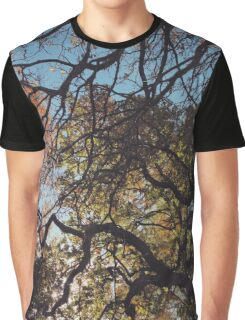 Autumn trees Graphic T-Shirt