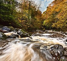Crumlin River In Autumn by Derek Smyth