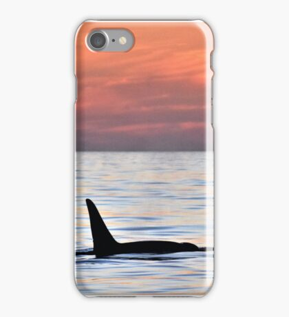Orca Sunset iPhone Case/Skin