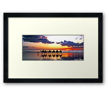 Camels at Sunset, Cable Beach, Broome Framed Print