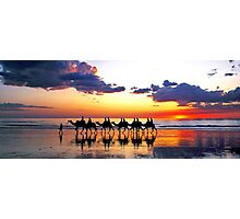 Camels at Sunset, Cable Beach, Broome Photographic Print