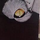 Cat eye by Steve Osment