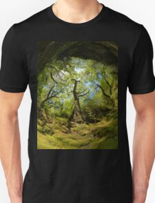 Ness Glen, Mystical Irish Wood T-Shirt