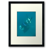 In Touch Framed Print
