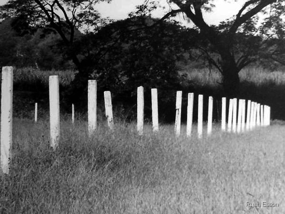 Picket Fence by Ryan Esson