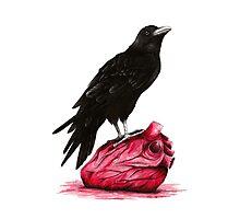 quote the raven: nevermore Photographic Print