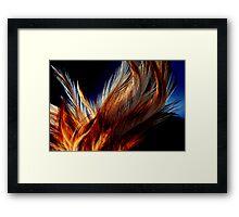 Honey Dust Feathers Framed Print