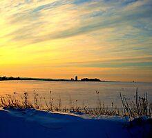 Sunset in Wisconsin by Lynne Prestebak