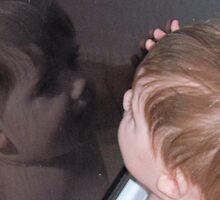 reflection by Kristina