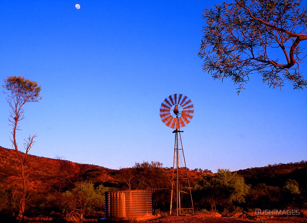 windmillmoon by BUSHIMAGES