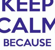 Keep Calm because The Bigger The Telly, The Smarter The Man Sticker